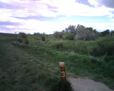 Mylar Park, Main course, Hole 3 Tee pad