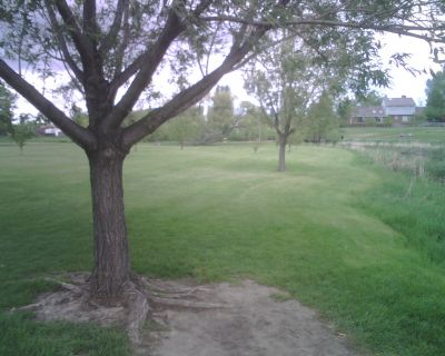 Mylar Park, Main course, Hole 9 Tee pad