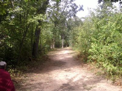 Newaygo State Park, Main course, Hole 1 Tee pad