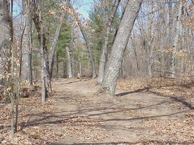 Newaygo State Park, Main course, Hole 4 Long tee pad