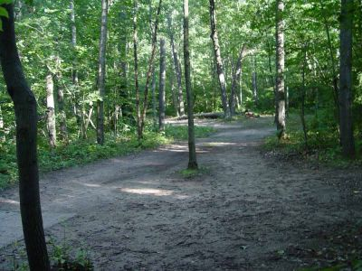 Newaygo State Park, Main course, Hole 6 Long tee pad