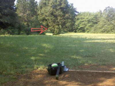 Woodmansee Park, Main course, Hole 9 Tee pad