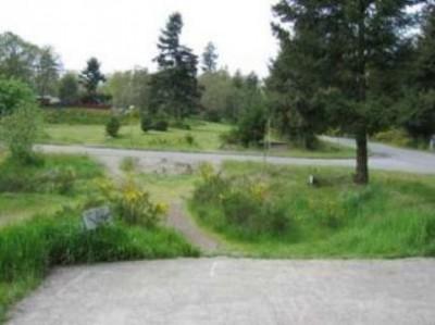 Fort Steilacoom Park, Southeast Course, Hole 1 Tee pad