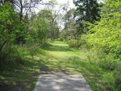 Fort Steilacoom Park, Southeast Course, Hole 7 Tee pad