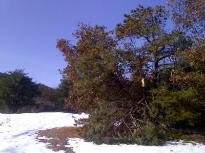 Crane Hill, Main course, Hole 17 Tee pad
