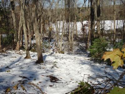 Crane Hill, Main course, Hole 11 Midrange approach