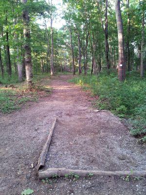 Randolph Park, Main course, Hole 6 Middle tee pad