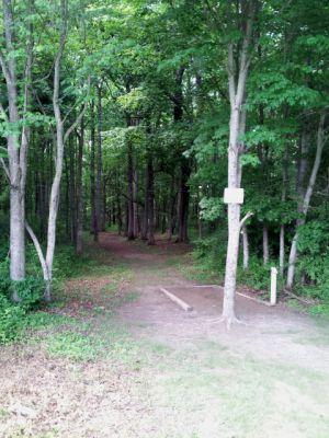 Randolph Park, Main course, Hole 1 Tee pad