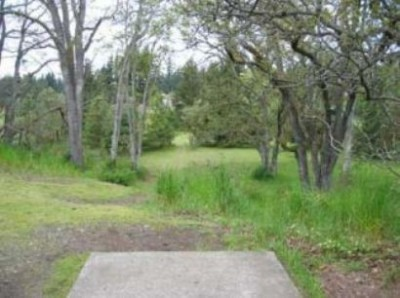 Fort Steilacoom Park, Pro Course, Hole 8 Tee pad