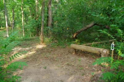 Whitetail Woods, Main course, Hole 8 Tee pad