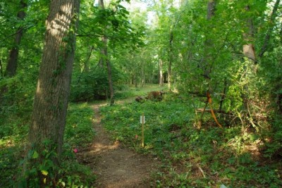 Whitetail Woods, Main course, Hole 9 Tee pad