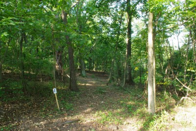 Whitetail Woods, Main course, Hole 4 Long tee pad