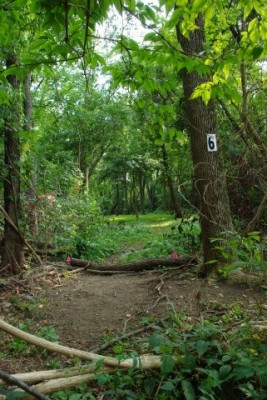 Whitetail Woods, Main course, Hole 6 Tee pad