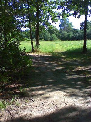 JAB Acres, Main course, Hole 6 Tee pad