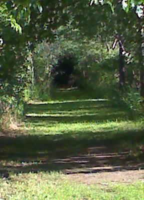 JAB Acres, Main course, Hole 11 Midrange approach