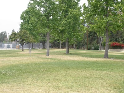 Northside Park , Main course, Hole 8 Tee pad