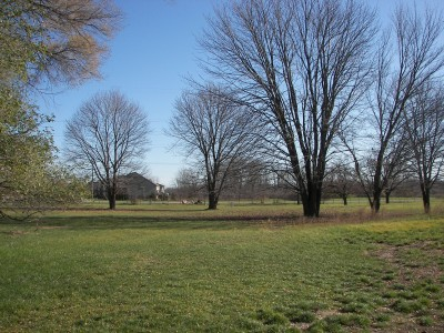 Lakeshore, The Ponds, Hole D Tee pad