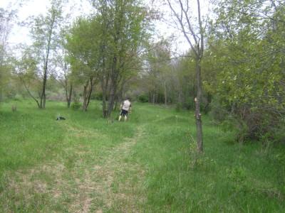 Hammond Hill, Main course, Hole 18 Long tee pad