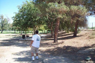Riverview Park, Main course, Hole 8 Tee pad