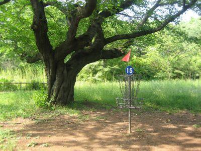 Showa Kinen Park, Main course, Hole 15 Putt