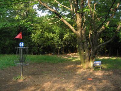 Showa Kinen Park, Main course, Hole 16 Putt