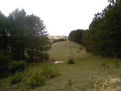 Garbage Hill, Main course, Hole 15 Reverse (back up the fairway)