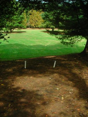 Steele Creek Park, Main course, Hole 2 Short tee pad