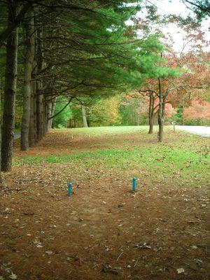 Steele Creek Park, Main course, Hole 3 Long tee pad