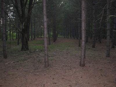 Deerfield Park, Deerfield, Hole 16 Tee pad