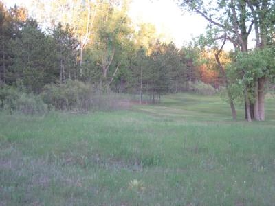 Deerfield Park, Deerfield, Hole 18 Reverse (back up the fairway)