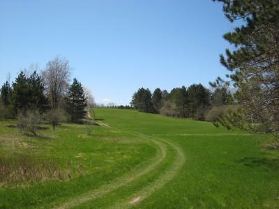 Deerfield Park, Deerfield, Hole 5 Reverse (back up the fairway)
