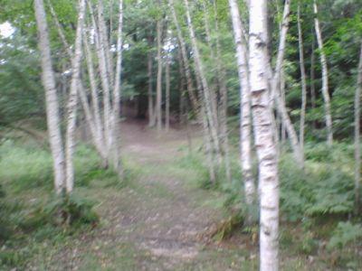 Deerfield Park, Deerfield, Hole 1 Long tee pad