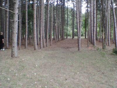 Deerfield Park, Deerfield, Hole 13 Midrange approach