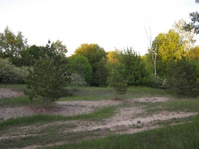Deerfield Park, Deerfield, Hole 3 Tee pad