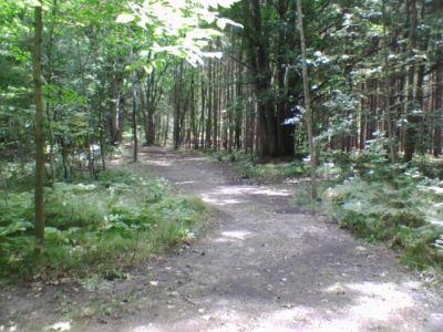 Deerfield Park, Deerfield, Hole 10 Long tee pad