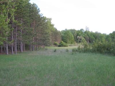 Deerfield Park, Deerfield, Hole 13 Tee pad