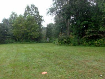Evergreen Fields, Main course, Hole 3 Midrange approach