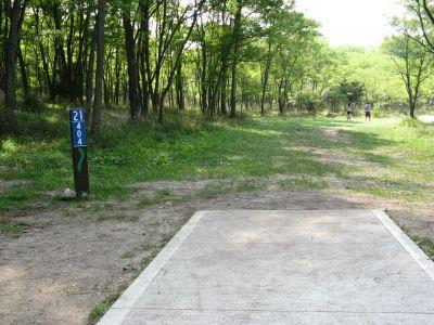 Kensington Metropark, Black Locust, Hole 21 Short tee pad