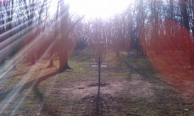 Kensington Metropark, Black Locust, Hole 26 Putt