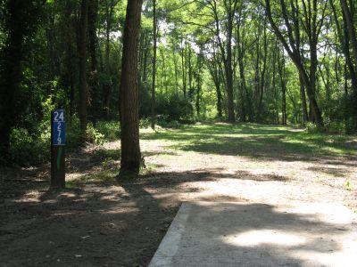 Kensington Metropark, Black Locust, Hole 24 Short tee pad