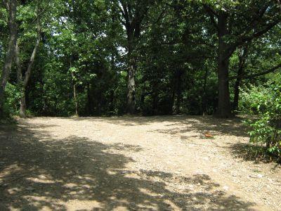 Kensington Metropark, Black Locust, Hole 11 Long approach