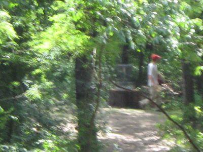 Kensington Metropark, Black Locust, Hole 18 Long tee pad