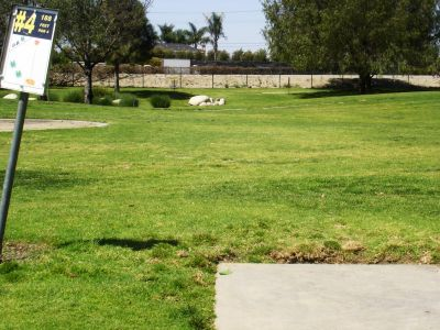 Liberty Park, Main course, Hole 4 Tee pad