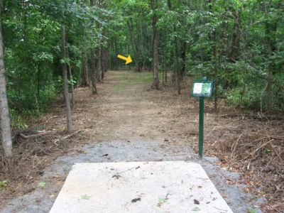 North Cabarrus Park, Main course, Hole 8 Tee pad