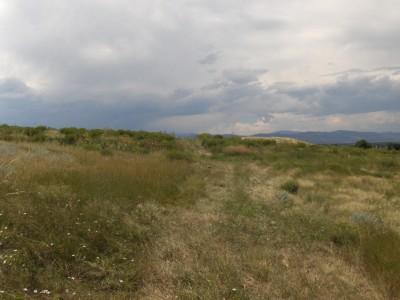 Timnath Reservoir, Main course, Hole 2 Tee pad
