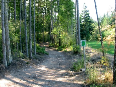 Fort Nugent Park, Main course, Hole 4 Tee pad