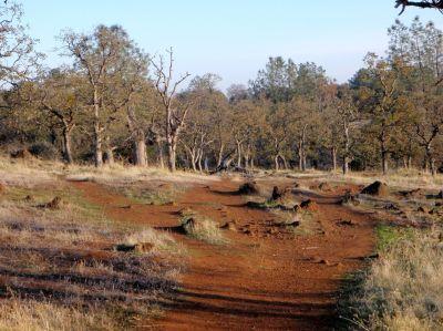 Bidwell Park, Main course, Hole 6 Tee pad
