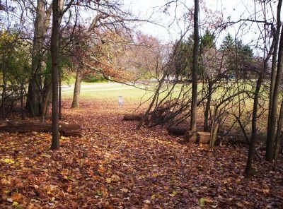 Irving Park, Main course, Hole 7 Short approach