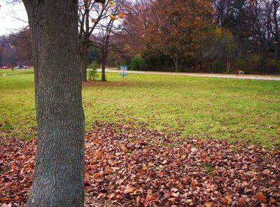 Irving Park, Main course, Hole 4 Short approach