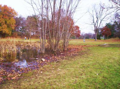 Irving Park, Main course, Hole 13 Midrange approach